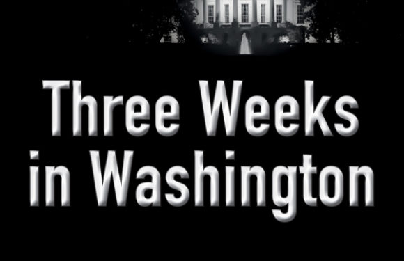 Three Weeks in Washington by Luana Ehrlich
