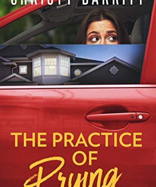 The Practice of Prying by Christy Barritt